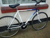 Large Frame Raliegh Road Bike