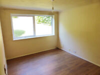 WELL LOCATED SPACIOUS ONE BEDROOM FLAT FOR RENT