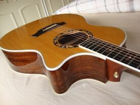 TAYLOR 814CE-L30 Anniversay Limited Edition