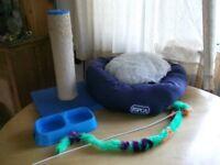 Assortment of cat/kitten items