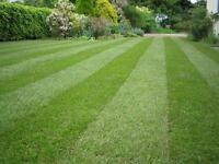 Tay Grass Cutting. Regular or one off cuts.