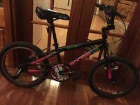 Apollo boogie girl bike