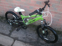 Apollo Xpander Kids Mountain Bike