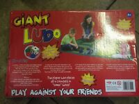 Kids giant ludo game