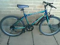 "Raleigh alien request bike 24"" wheels suit 7yrs+"