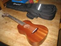 Puravida (Tenor) ukulele