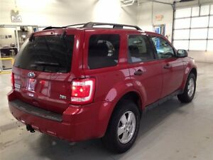2011 Ford Escape XLT| SYNC| CRUISE CONTROL| BLUETOOTH| 133,370KM Kitchener / Waterloo Kitchener Area image 7