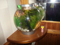 Biorb 30 Litre Fish Tank With Light and pump