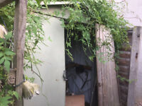 metal shed / green house