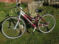 Ladies City Bike Needs Slight Attention Or Ride As Is Bargain