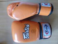 Fairtex 10oz Gloves