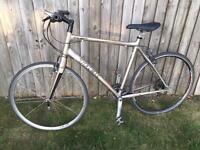 Trek Road Bicycle, Carbon Forks, Straight Handle