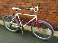 Retro unisex Peugeot mountain bike