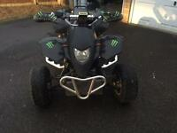 Quadziller for sale with a Honda CBR 600 cc engine