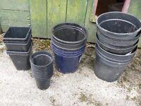 Various plant Pots