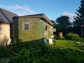 32 foot pigeon shed