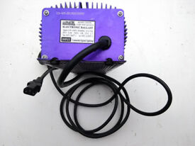HORTICULTURAL LAMP ELECTRONIC BALLAST