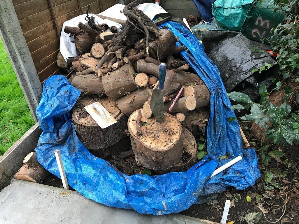 Free dry logs