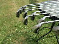 Tiger Shark Golf Clubs