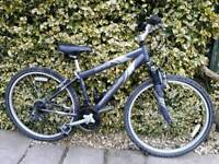 Teenagers boys or girls mountain bike,