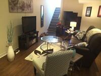 One bedroom basement apt in newmarket