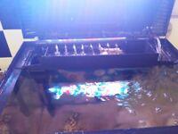 Boyu fish tank