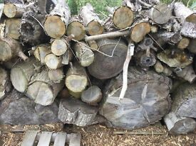 Seasoned Firewood Logs for Camping Fire BBQ etc