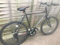Bike for sale £80