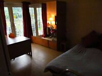 Large Double Garden Room in Luxury Private House Monday to Friday let