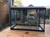 Aquarium for tropical fish. 70 litre tank, filter, pump, gravel and decoration.