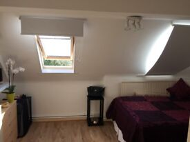 Large Single Room with a Private Shower & Parking (Island Gardens Canary Wharf Greenwich Cutty)