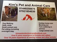 Horse care, Dog Walking and Pet visits.