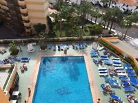 One Bedroom apartment in Playa de Las Americas 500 m to the beach Tenerife