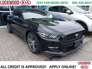 2016 Ford Mustang 2.0T ECO BOOST - LEATHER, AUTOMATIC