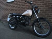 125cc Pioneer Flat track, cafe racer, style Track star motorbike