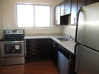 Renovated 1 Bedroom, Pet Friendly (Courtland Ave/Conestoga Pkwy)