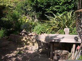 CENTRAL BRIGHTON - 2 bed flat with garden, avail 1st nov, no fees