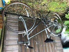 Raleigh sports nova ladies bicycle
