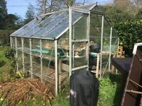 "Greenhouse 10'6"" x 8'6""- includes benches"