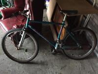 Saracen Andes Mountain Bike