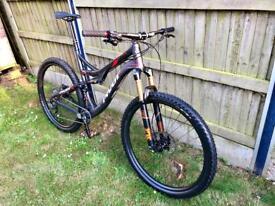 Carbon Mountain Bike