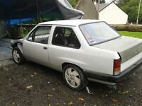 vauxhall nova saloon track based road race not redtop c20let roll cage omex ecu