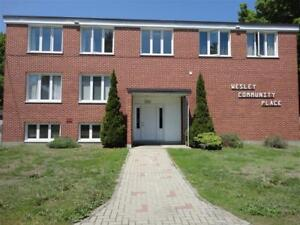 Beautifully Renovated Student Residence