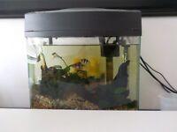12 L Fish tank