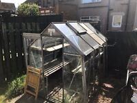 Greenhouse - £50 ono collection only. Good size.