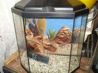 Brand new freshwater fish tank.