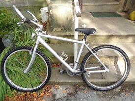 Silver adults full size mountain bike
