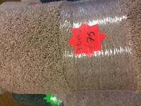 Carpet Remnant, 3.10m x4m