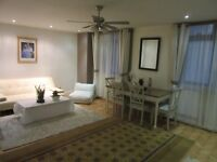 Large 1 bedroom flat for rent in Marylebone Marble Arch
