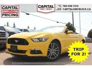2017 Ford Mustang GT PREMIUM V8 CONVERTIBLE NAV HEATED & COOLED